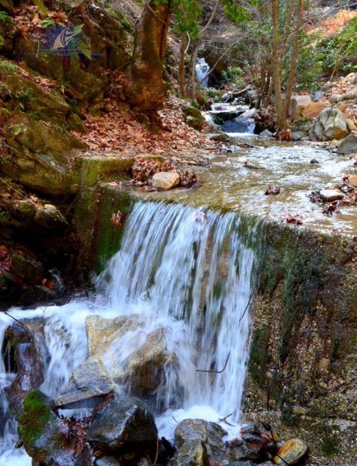 Urlaub in der Aydin Türkei