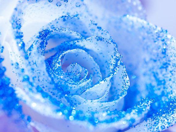 Elsa Blue Glitter Rose Wall Art  Frozen by TinyDelicateWorld