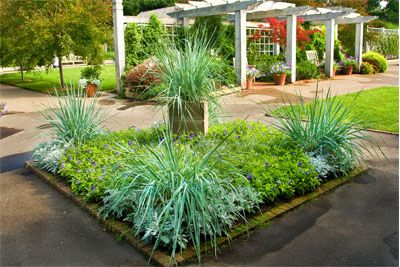 36 best images about sensory garden ideas on pinterest for Sensory garden designs