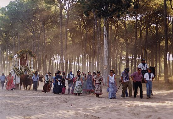 Fotos del camino   Rocio.com - camino0055_std