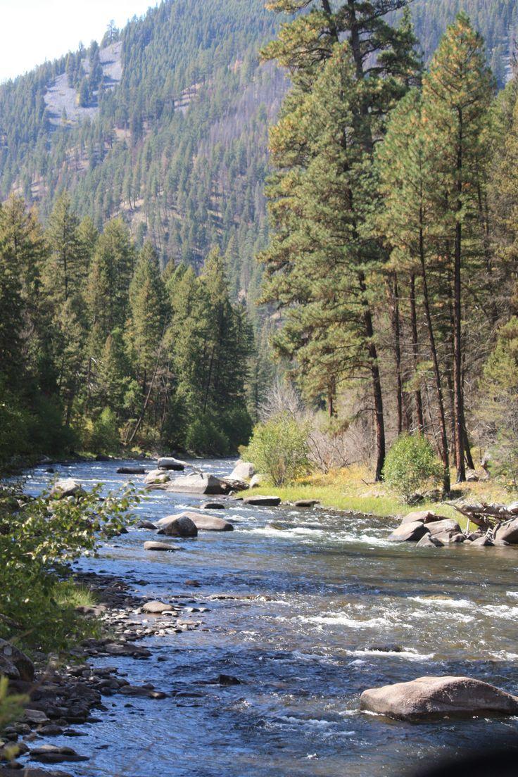 Rock Creek, Montana.  Blue ribbon trout stream!