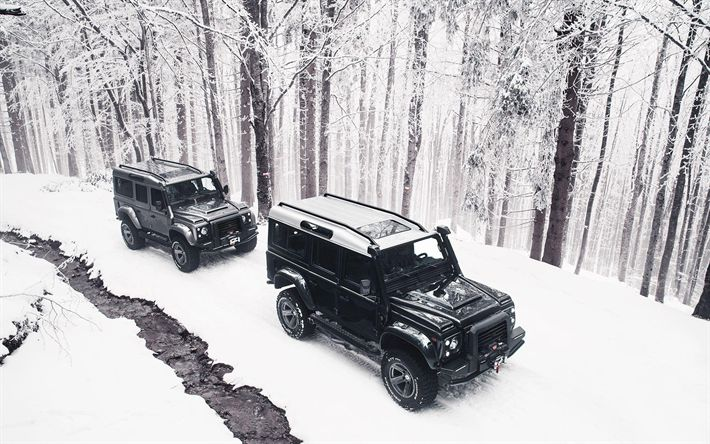 Download wallpapers Land Rover Defender 110, winter, 2018 cars, Ares Design, offroad, tuning, SUVs, Land Rover