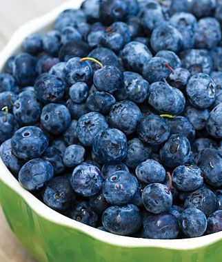 how to grow blueberries from fruit