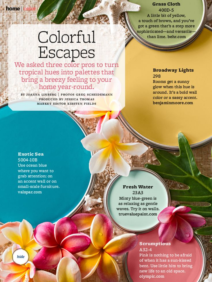"Better Homes & Gardens ""Colorful Escape"" - These are also Key West Colors.... Ok so this is more what I want too. Would match my cups. Wish I could see how it would look with wood trim"