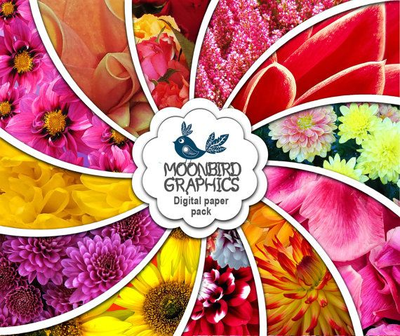 AUTUMN FLOWERS Fall digital paper Digital by MoonbirdGraphics
