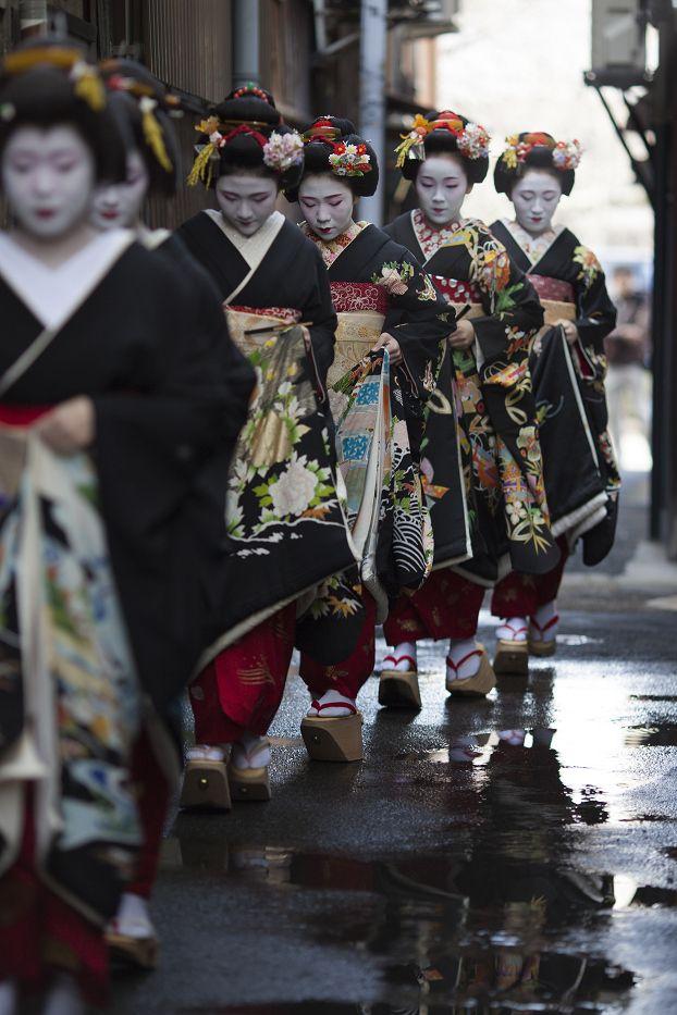 maiko + geiko (geisha) in formal kimono, miyagawa-cho, kyoto | japanese culture