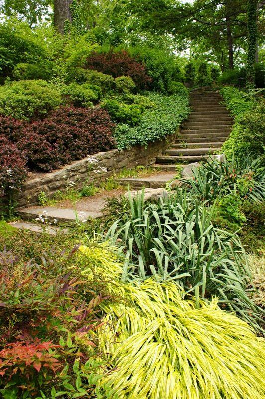 Slope Landscaping: Cleveland Botanical Garden | GardenVisit.com, the garden landscape guide
