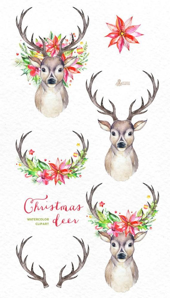 Christmas Deer Watercolor Deers Antlers Flowers Hand Etsy Christmas Deer Watercolor Deer Christmas Drawing
