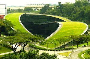 Scuola d'arte, design e media - Singapore     Un tetto simbolo della creatività, non poteva che sovrastare un'accademia del design