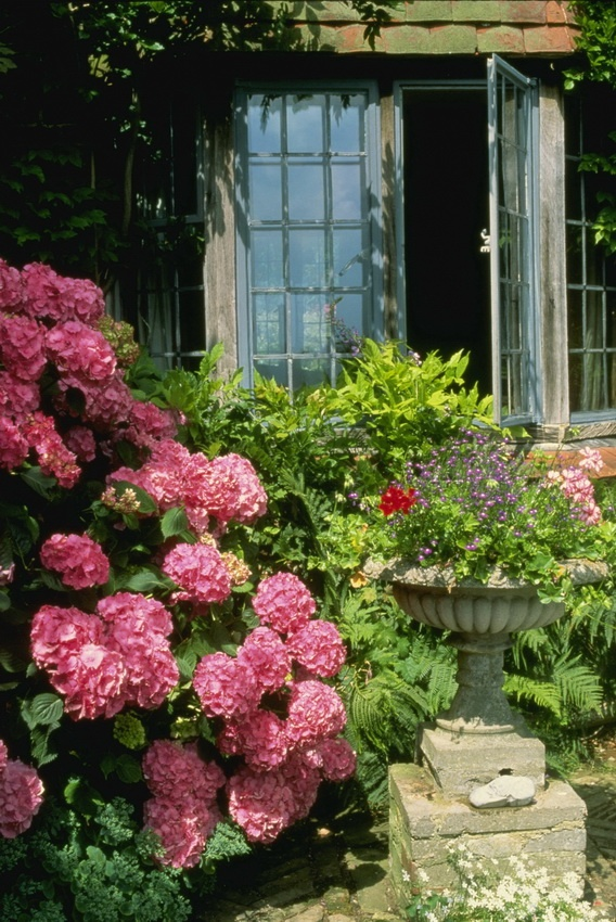 Beautiful English Flower Garden best 25+ english country gardens ideas on pinterest | english