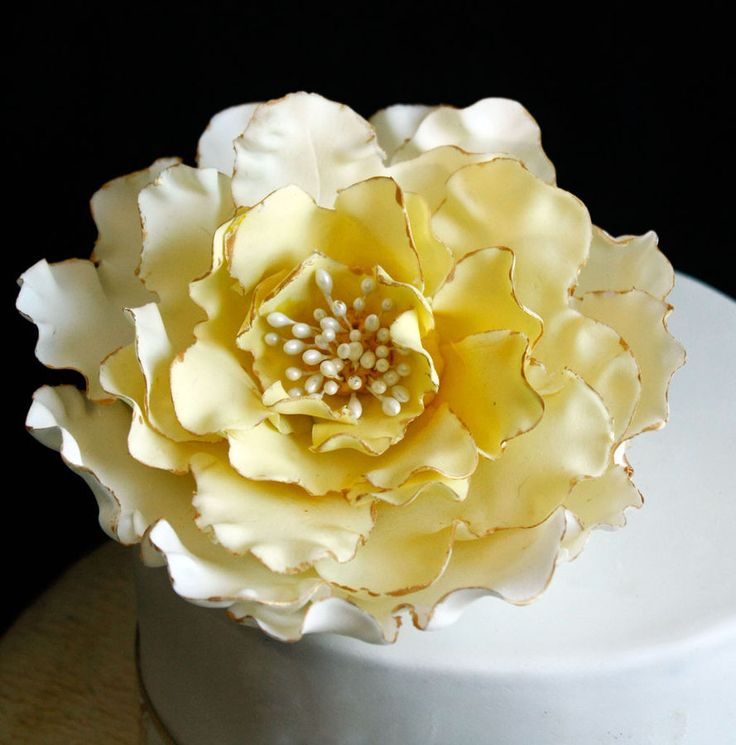 Pictures Sugar Paste Flowers Ideas For Cakes