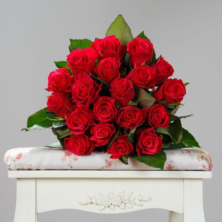 https://www.orasulflorilor.ro/buchete-flori/pasiunea-rozelor-buchet-19-trandafiri-rosii/