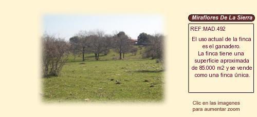MAD492 Miraflores de La Sierra. Madrid  Finca rustica en venta http://www.lancoisdoval.es/fincas-en-venta.html