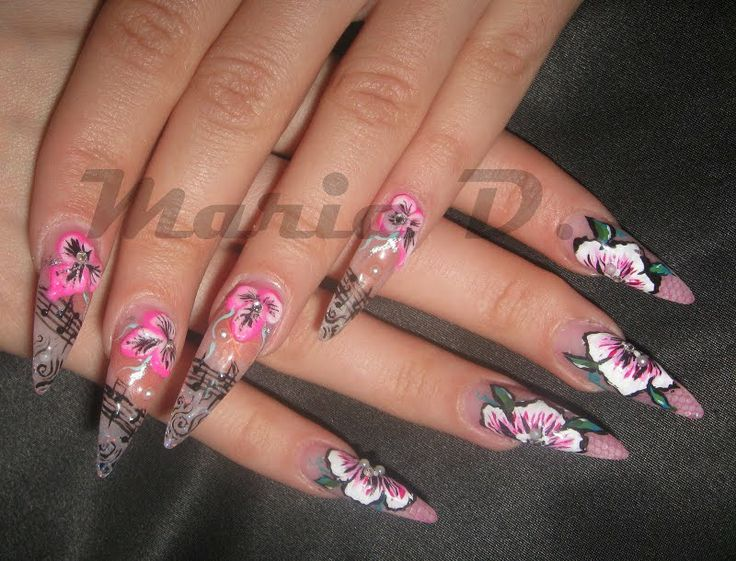 17 best Long Nails Lovers Like ME images on Pinterest | Nail art ...