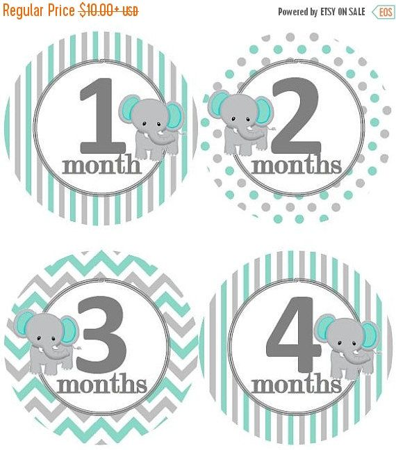 SALE Baby Monthly Milestone Growth Stickers by GinaMarieOriginals