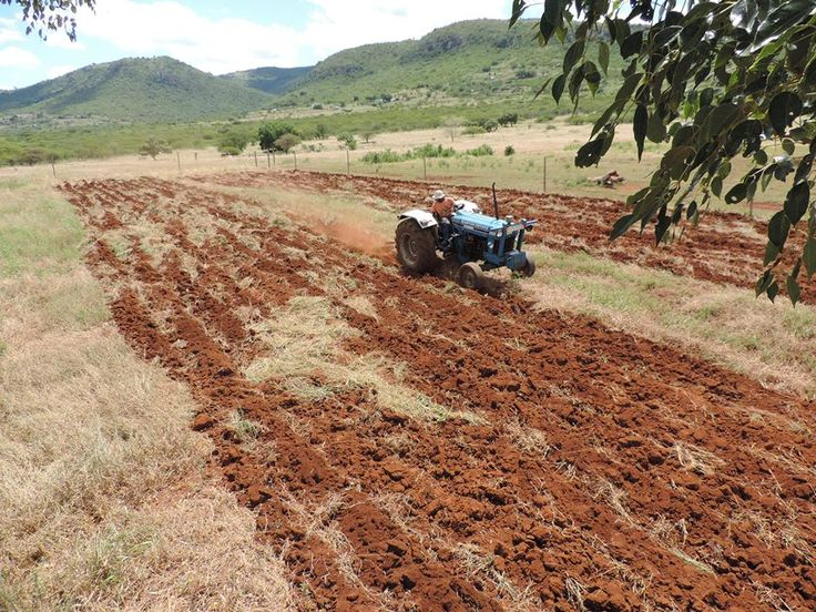 Land in rural KwaZulu Natal being ploughed in preparation for the creation of a community garden!   To learn more about this program, visit our website: http://www.happyafricafoundation.org/project-detailed.html?pcode=23