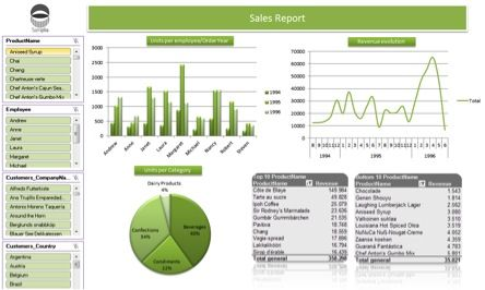 Sample Easy Dashboard from DataCycle Reporting from ApeSoft, a complete Excel Reporting, Excel Dashboards and Excel Automation solution