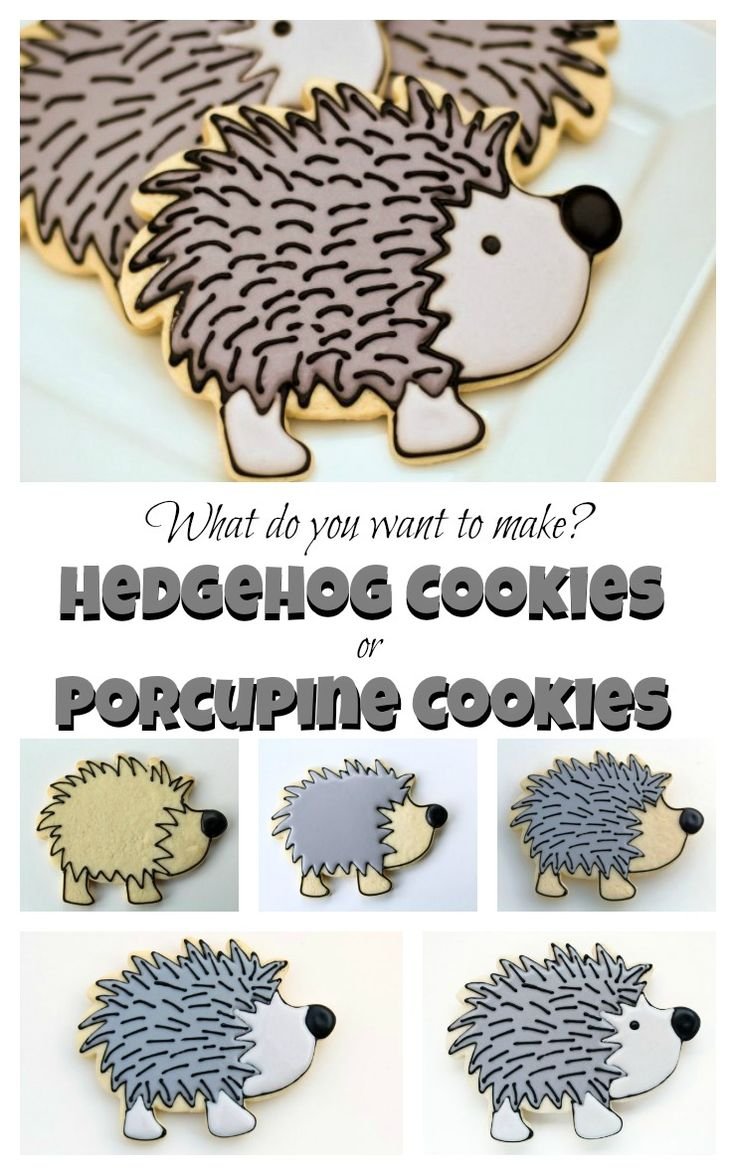 How to Make Hedgehog or Porcupine Cookies via www.thebearfootbaker.com
