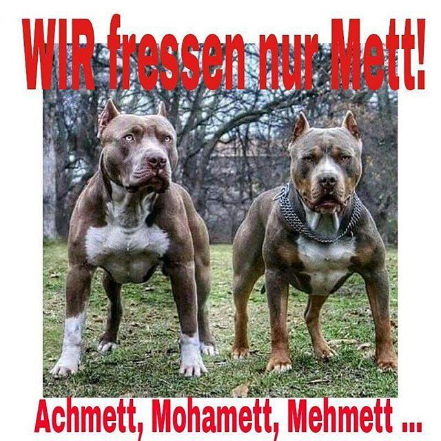 Mett ...