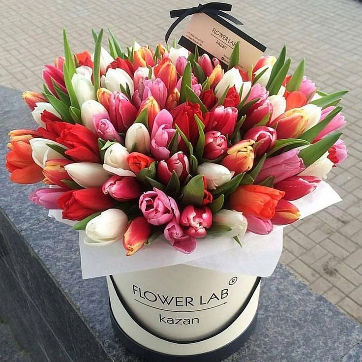 Tyulpany Luxury Flowers Flower Boxes Tulips Arrangement
