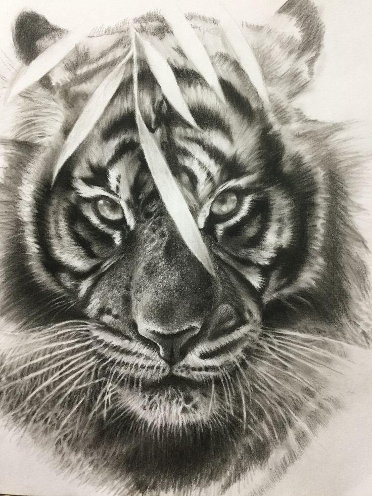 тигр тату эскиз картинки что