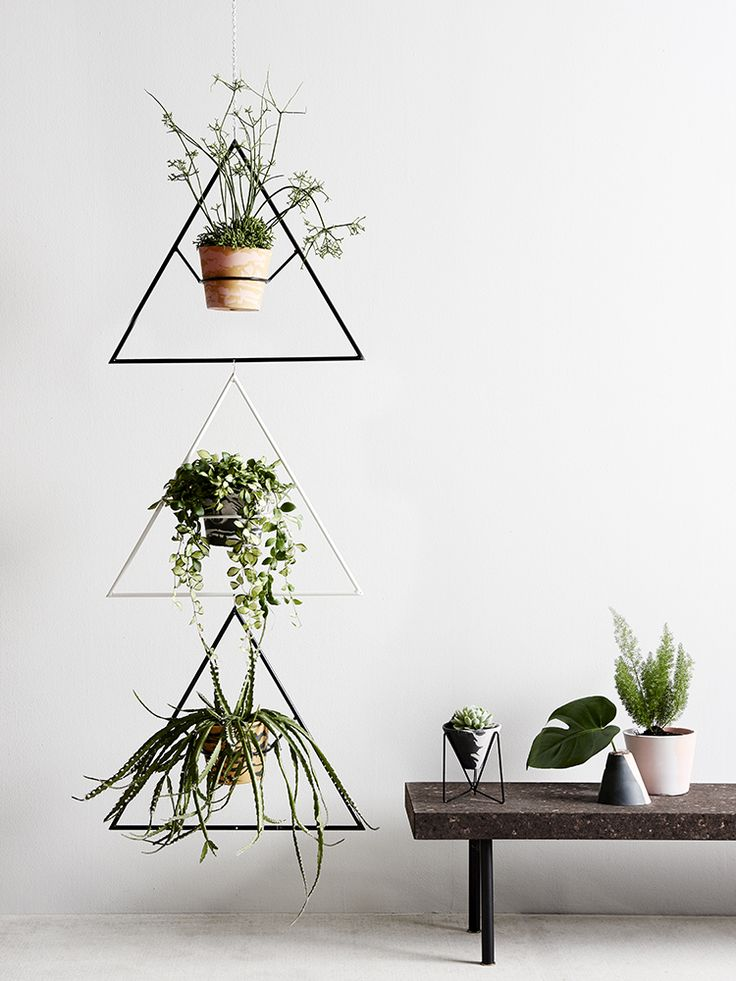 These holders (by Capra Designs) are so pretty! Such a cool way to display hanging plants inside.