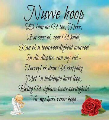 Nuwe hoop