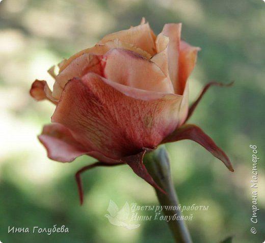 """Роза цвета """" капучино"""" из х.ф.Подробный МК.Часть вторая."""