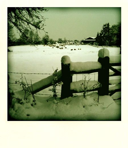 after snow in East Sussex