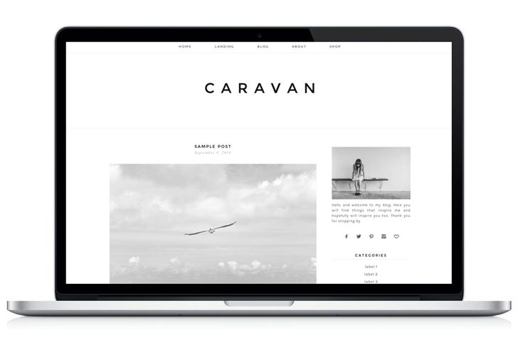 Score: 77 Responsive WordPress Theme – Caravan Template works for WordPress.org only.
