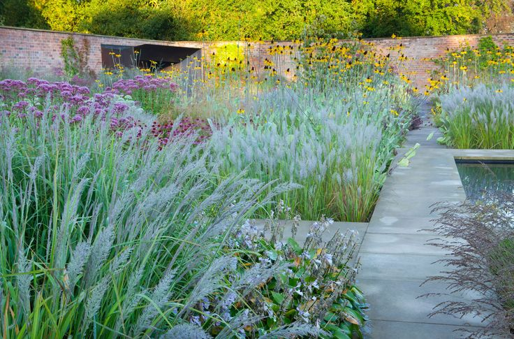 Cheshire garden tom stuart smith pinned to garden design for Grasses planting scheme