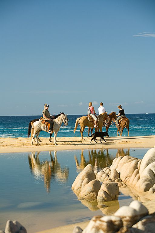 Horse riding on the the beach. Cabo San Lucas.
