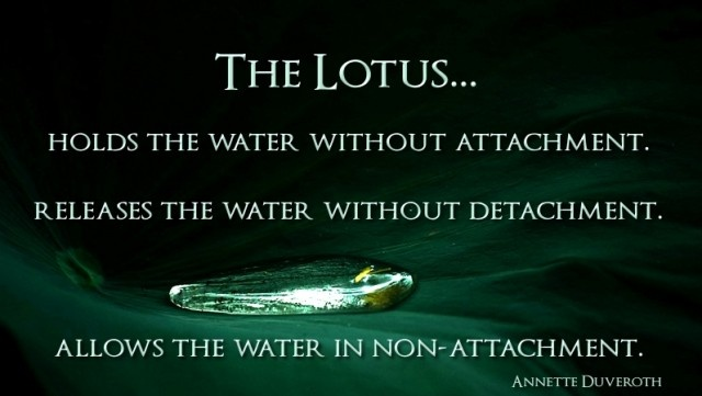 The Lotus… Holds the water with out attachment. Releases ...