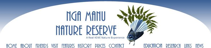 Nga Manu Nature Reserve, 13ha including original lowland swamp on the Kapiti coast