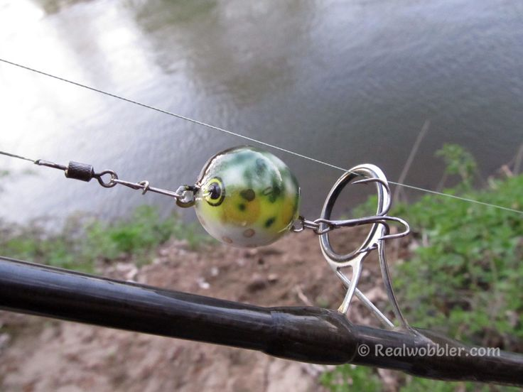 """Topwater creations for the upcoming warm season: Belly Lures Mini """"Frog"""". Effective for chub, bass, perch, pike, trout, asp, wels catfish, etc. http://www.realwobbler.com/en/topwater-lures/182-topwater-belly-lures-frog.html  #fishing #chub #basslure #trout #pikelure #asp #catfish #bellylure #realwobbler #topwater #topwaterfishing #customlures #handmadelures #woodenlures #angeln #hechtköder #wels #rapfen   #wobbler #pesca #blackbass #lucio #trucha #señuelos #риболов #воблер #рибалка…"""