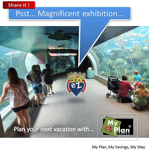 """""""Magnificent Spot 