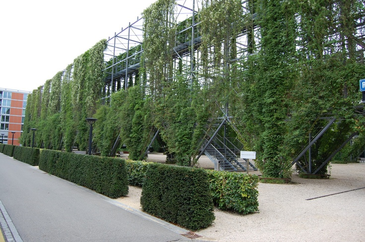 2432 best green wall facade images on pinterest - How to build a living wall ...