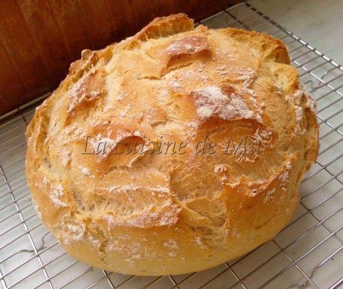 Voici un pain inratable et facile que mes hommes adorent. Il vous faut: 3/4 d'un cube de levure 300 g d'eau 250 g de farine de blé 250 g de farine d'épeautre 2 càc rase de sel Mettez la levure dans le bol avec l'eau et réglez: 2 minutes, 37°, vitesse...