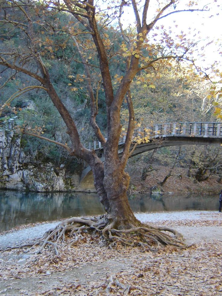 Zagoria Epirus Greece