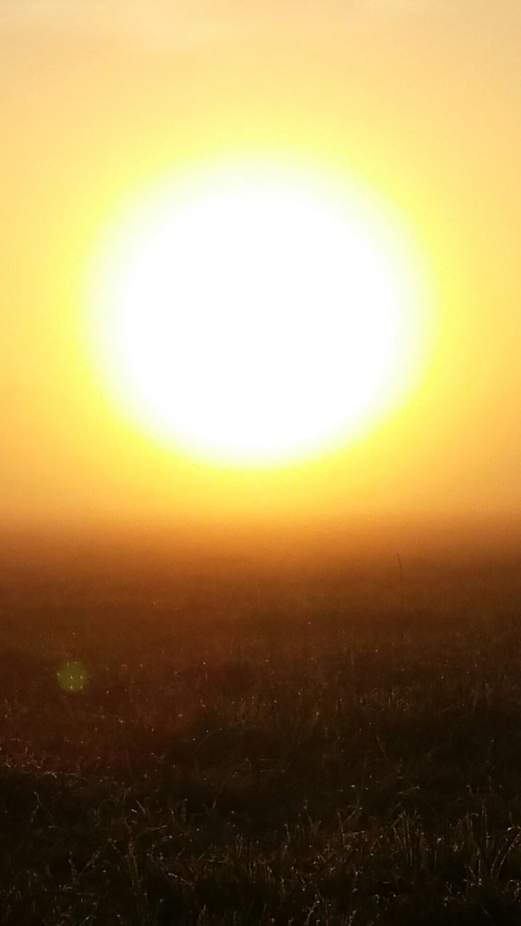 #gold #sunrise #impressed
