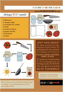 Easy Frugal Living: How To Save Tomato Seeds