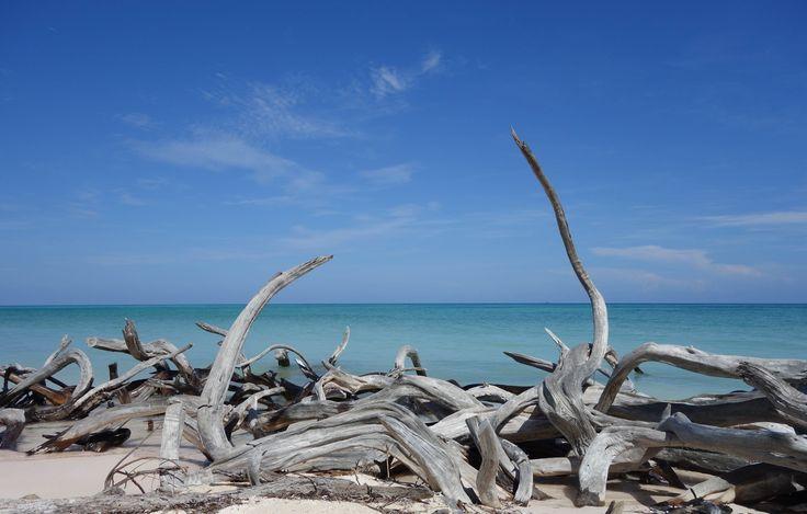 Playa Jutias. Cuba.