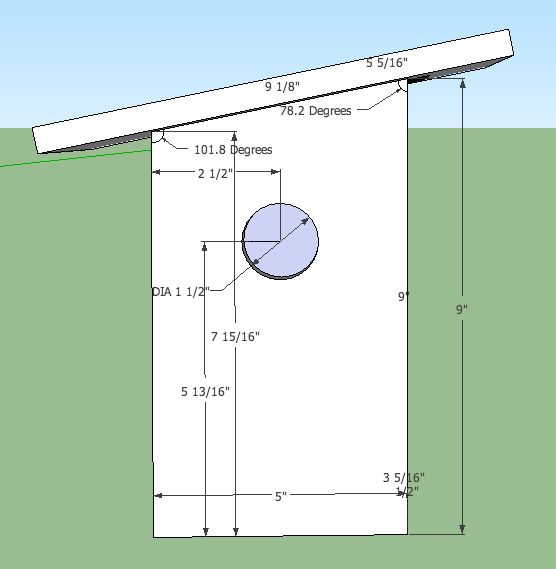I looked into the plans of a bird box appropriate for a house sparrow to nest, and used the dimensions to design my own nest box.