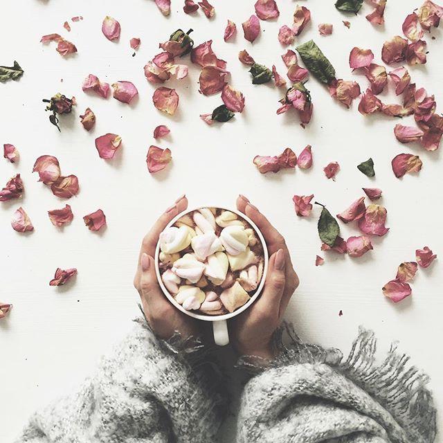 Hello Wednesday✋☀️ . . Dzień dobry w ten piękny i słoneczny dzień☀️ Słońce świeci, koncert u sąsiada trwa, czego chcieć więcej Czekam na panów od rur, mają sprawdzać coś tam bo w bloku będzie remont. Nie mogę nawet ukręcić naleśnika a mieli być dwie godziny temu Fińska punktualność Pięknego dnia❤️mua . . #tuesday #morning #marshmallows #alotofcalories #cocoa #roses #wednesdaymood #instadaily #vscofinland #vscocamgram #vsco #still_life_gallery #tv_living #tv_stilllife #tv_lifesty...