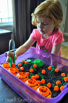 pumpkin patch sensory bin. She also has a little scooper shovel. Could possibly put a little tractor with a wagon for hay ride.