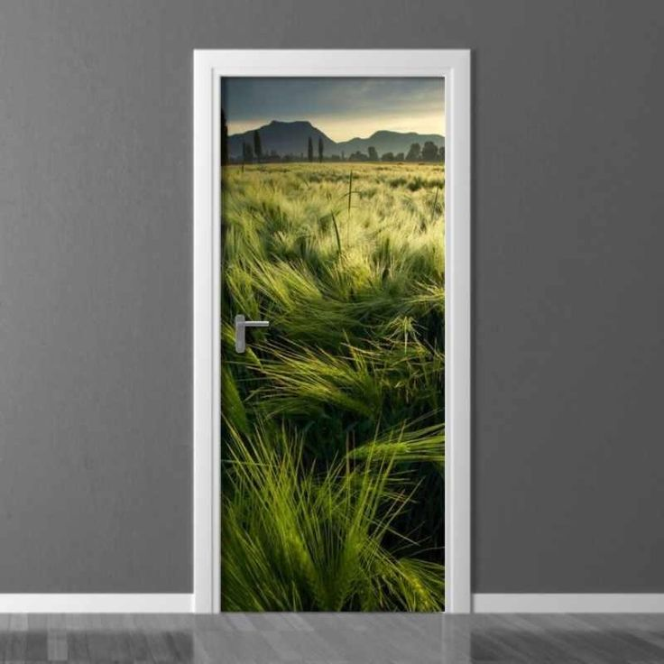 fototapeta na drzwi 05X pole jęczmienia 2601