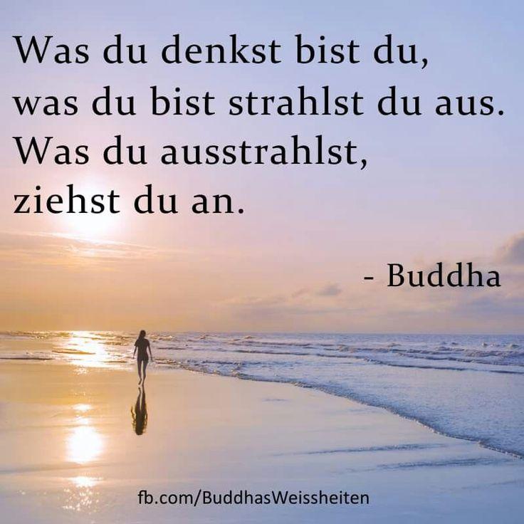 """""""Was du denkst, bist Du. Was du bist, strahlst du aus. Was du ausstrahlst, ziehst du an."""" - Buddha"""