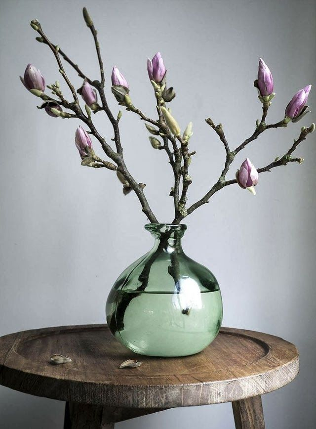 Lovely magnolia blossom in a vase