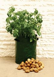 Potato pots! Love mine