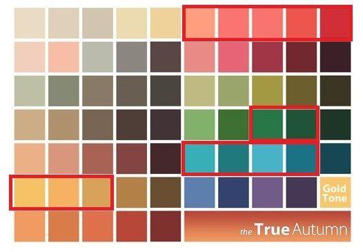Осенние колориты также используют желтые, зеленые, бирюзовые и коралловые оттенки. Зимы используют все те же желтый, бирюзовый и зеленый, а также ярко красные и ярко-розовые.